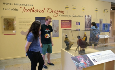 Picture for 'Feathered Dragons' Nest at the MSU Museum